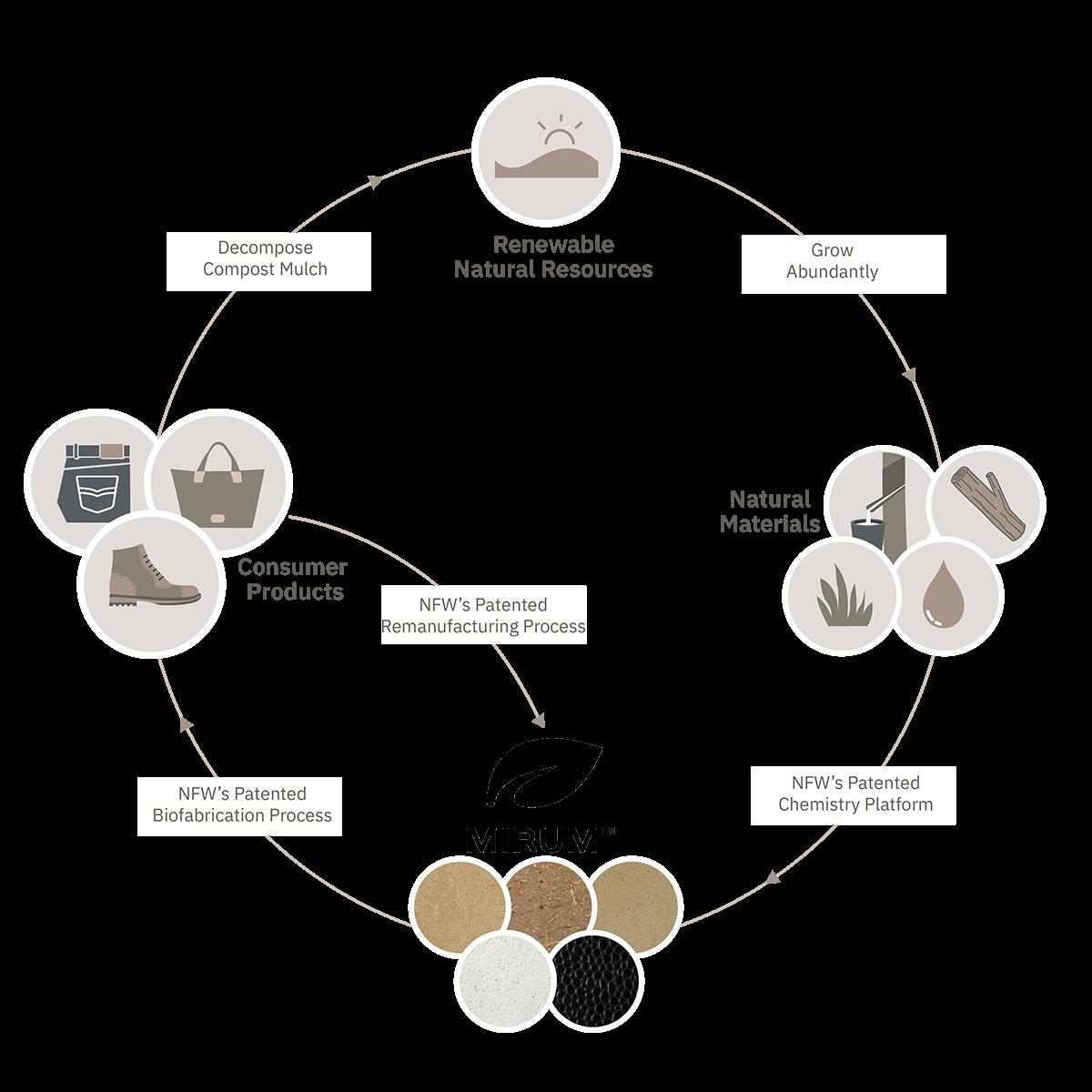 Mirum Circle Graphic-01